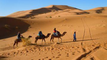 モロッコ体験談 秋10月no.2|サハラ砂漠の風の画像