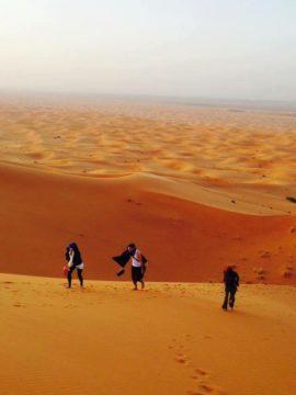 モロッコ体験談 冬12月no.2|サハラ砂漠の風の画像