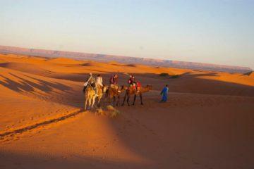 モロッコ体験談 2012|サハラ砂漠の風の画像