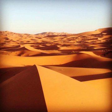 モロッコ体験談 秋9月no.4|サハラ砂漠の風の画像