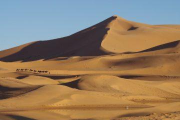 「サハラ砂漠の風」体験談 5月 no.3の画像