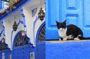 モロッコ体験談 冬12月no.3の画像