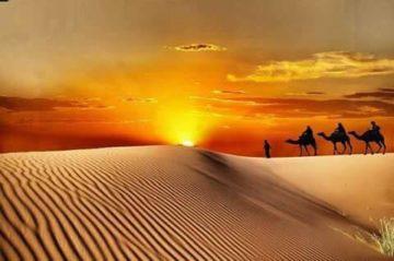 モロッコ弾丸砂漠ツアー | サハラ砂漠の風の画像