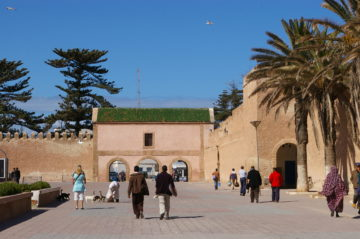 エッサウィラ観光| サハラ砂漠の風の画像