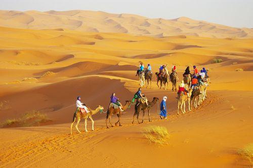 らくだでツーリストテントへ向かう砂漠ツアー