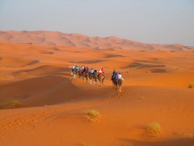 モロッコ砂漠でらくだトレッキング