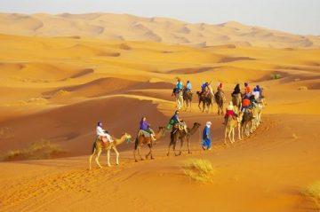 「サハラ砂漠の風」で巡る砂漠・らくだツアーの画像