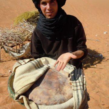 モロッコの砂漠のピザの画像