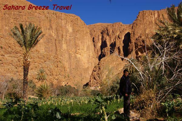トドラ渓谷 モロッコ 砂漠ツアー